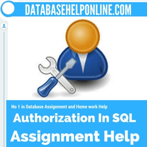 Authorization In SQL assignment help