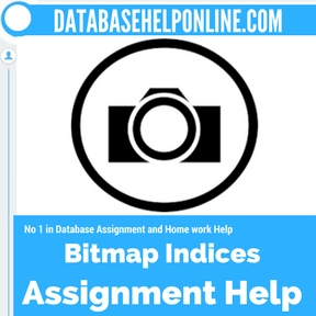 Bitmap Indices Assignment Help