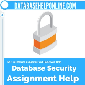 Database Security Assignment help