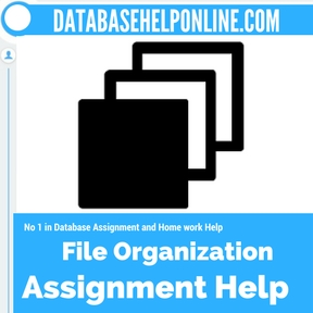 File Organization assignment help