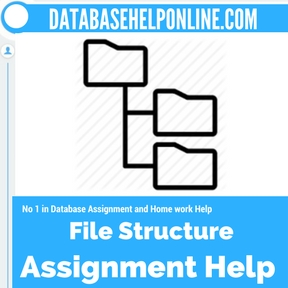 file structure assignment help file structure database project  file structure assignment help