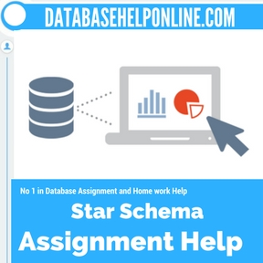 Star Schema Assignment Help